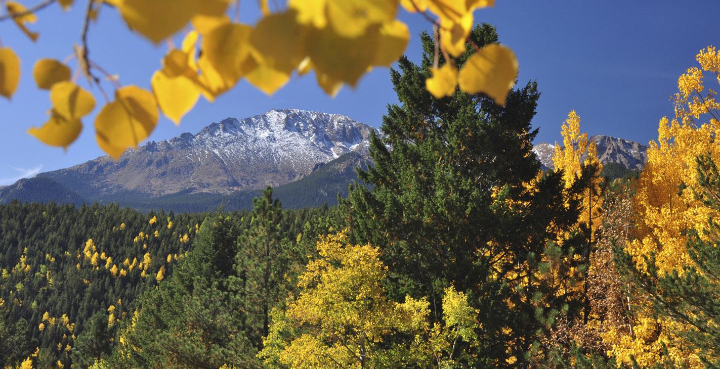 SS 49 photos.com 177139623 Outdoor