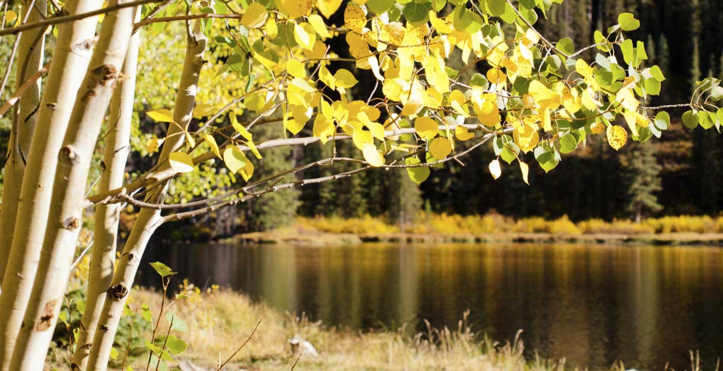 SS 51 photos.com 185594388 Outdoor