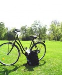 Bike in a Park Golden Colorado Relocation Tips