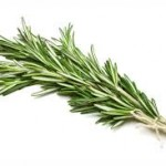rosemary 150x150 Holiday Potpourri
