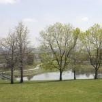 Barnum Dog Park and Lake 150x150 P. T. Barnums Neighborhood