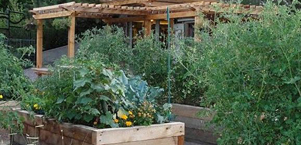 Ken Caryl Community Garden