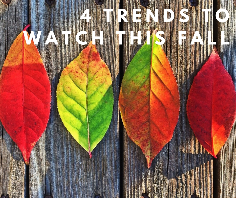 4 trends to watch this fall in the denver real estate market 4 Trends in the Denver Real Estate Market to Watch this Fall