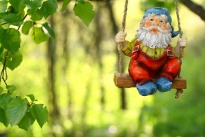 Garden Gnome 300x200 GAIN CLARITY WITH A FEASIBILITY STUDY