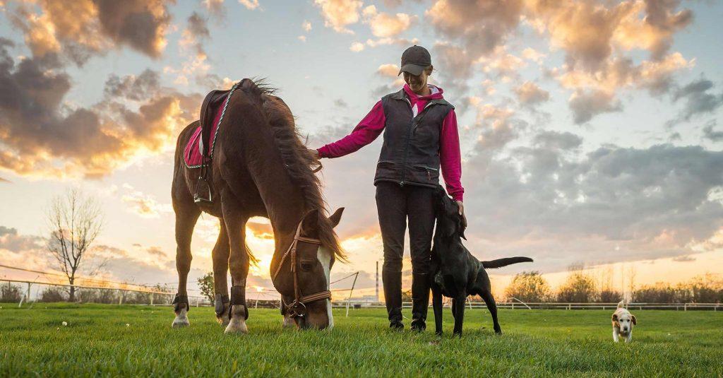 horse and girl 1024x535 Equestrian Safari Real Estate