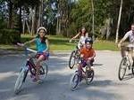 Biking b 150x113 10 Best Things to do Around Centennial Report