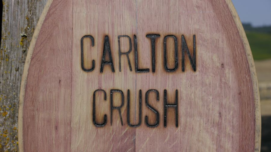 carlton crush2 Carlton Crush this weekend