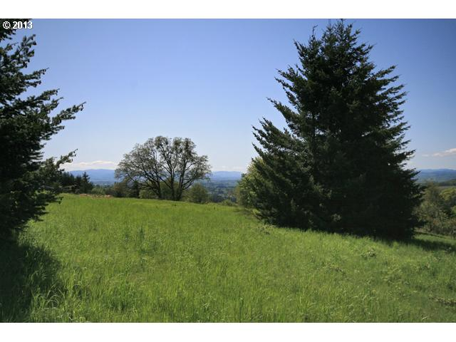13192533 10 Lots and Land for Sale