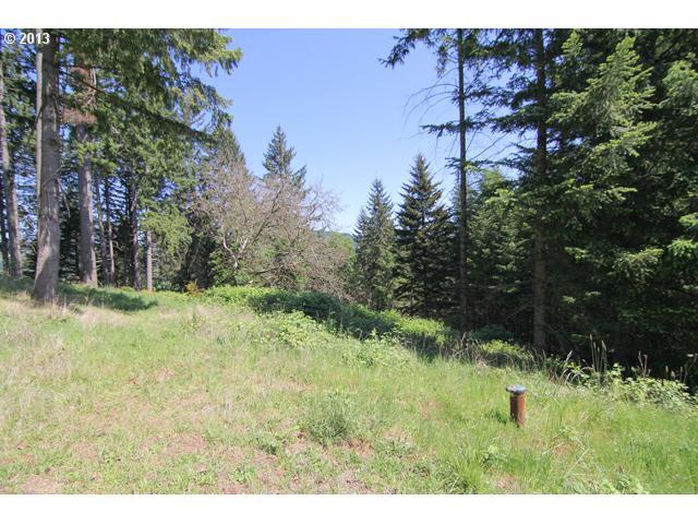 13570844 15 McMinnville Oregon Acreage for Sale
