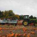 hay ride Harvest Fun   Fall Farm Activities in Colorado