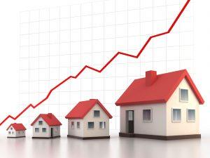 real-estate-assest