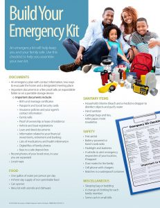 Risk 231x300 Build Your Emergency Kit