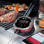 wifi_grill_thermometer