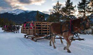 sleigh-ride-colorado-winter-activities