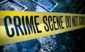 Platt Park Crime